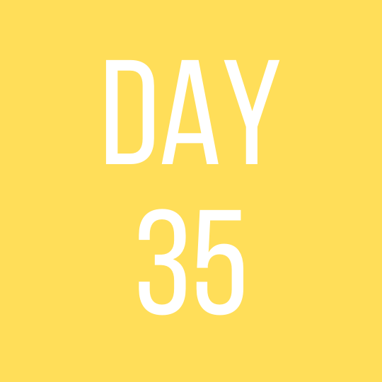 Day 35 Monday