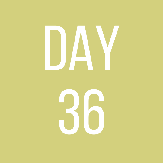 Day 36 Tuesday
